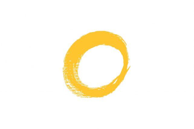 logo + znak_skin
